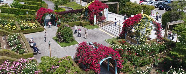 緑化造園トップ画像スマホ