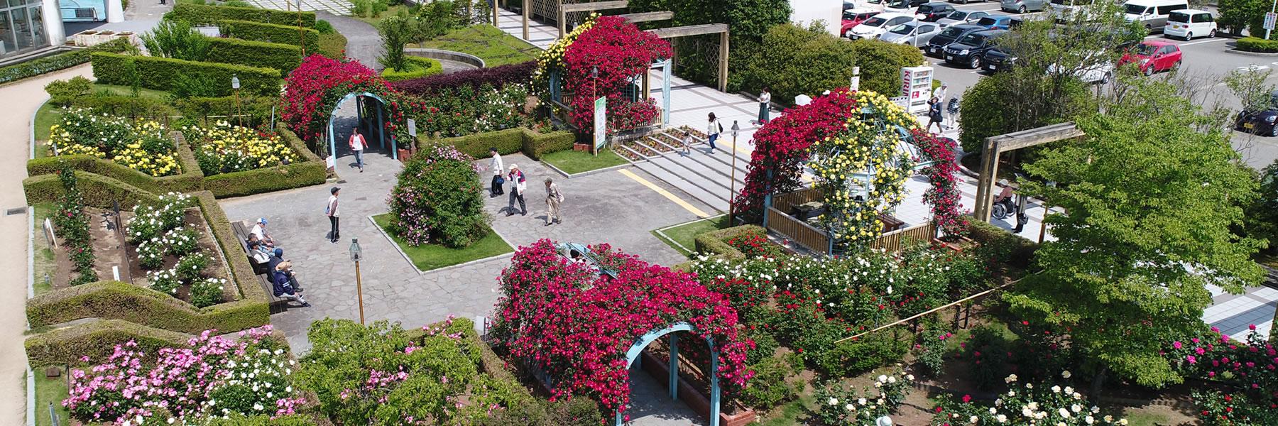 緑化造園トップ画像